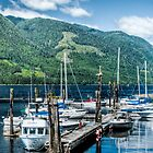 Port Alice Public Dock by Rick Ruppenthal