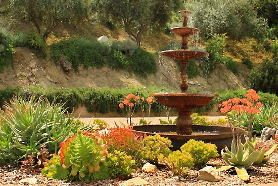 Cactus Fountain by James Eddy