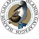 Galapagos Islands Blue Footed Booby by Zehda