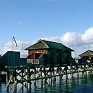 Cowichan Bay (2)  by Jann Ashworth