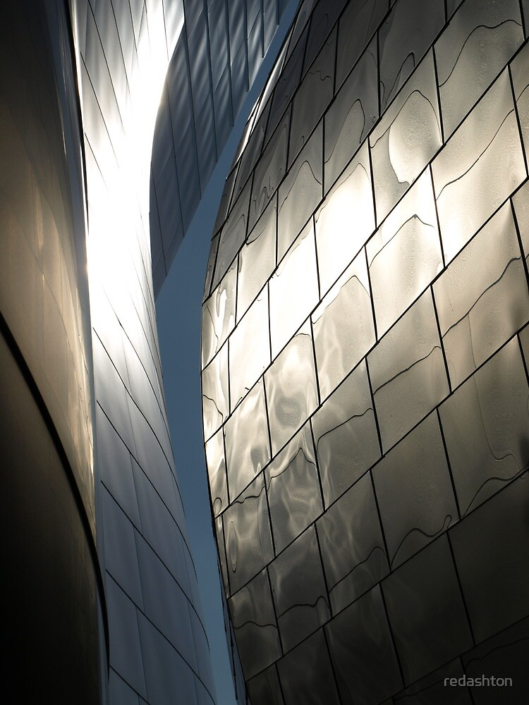 Steel Canyon - Walt Disney Hall by redashton