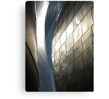 Steel Canyon - Walt Disney Hall Canvas Print