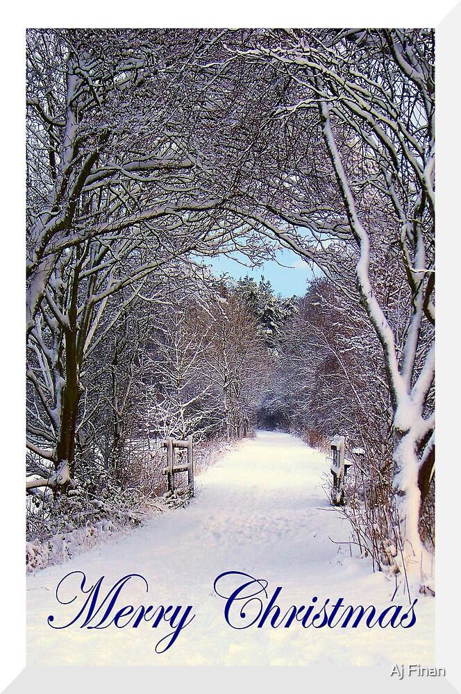 Winter Wonderland. by Aj Finan