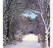 Winter Wonderland. by Aj Finan