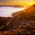 Hurricane Ridge Sunset by Alex Burke