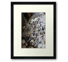 Zen and Peace Framed Print