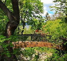 Lithia Park Bridge by James Eddy