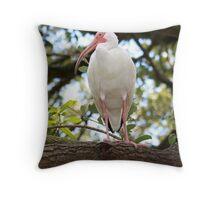 White Ibis - Hanging out! Throw Pillow