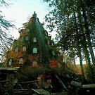 Un Hotel con forma de Volcán......Huilo-Huilo.  Chile. by cieloverde