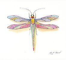 A Dragonfly by John N.  Stewart