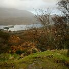Three Lakes - Ireland by Kathryn Steel