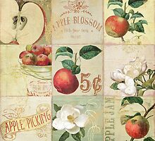 Apple Blossoms I by mindydidit