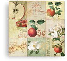 Apple Blossoms I Canvas Print