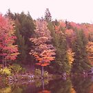 Autumn At Parker Dam by teresa731