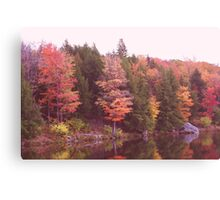 Autumn At Parker Dam Canvas Print