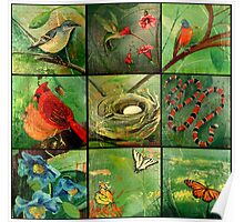 Birds, flowers, butterflies and the things in my backyard Poster
