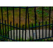 Garden Gate Close Up Photographic Print