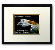 Super Macro Photography:Featured Banner  Framed Print