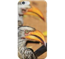 Yellow-billed Horn-bill - Beaks of Color and Life iPhone Case/Skin