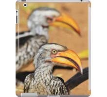 Yellow-billed Horn-bill - Beaks of Color and Life iPad Case/Skin