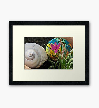 Moon Shells Framed Print