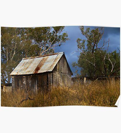 bush shed Poster