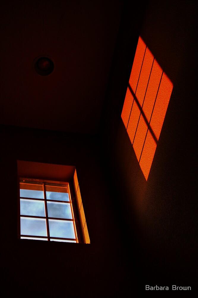 Window Light by Barbara  Brown