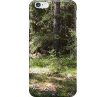 Norrboda Skogsstig iPhone Case/Skin