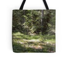 Norrboda Skogsstig Tote Bag