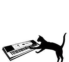 keyboard cat by tiffanyo