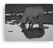 Black Rhino Reflection Canvas Print