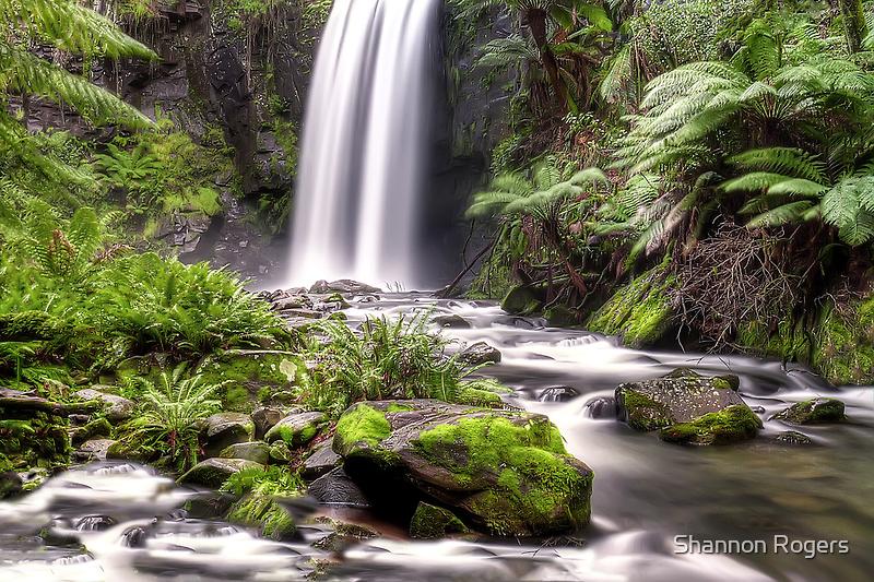 The Beauty of Hopetoun Falls  by Shannon Rogers