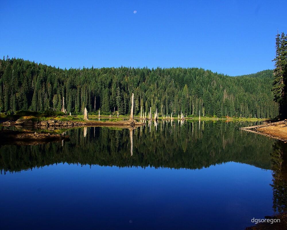 Goose Lake Wa Goose Lake  Washington