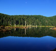 Goose Lake, Washington  by Don Siebel