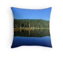 Goose Lake, Washington  Throw Pillow