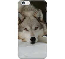 Winters Grey iPhone Case/Skin