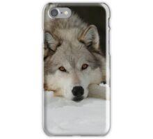 Winters Grey iPhone Case/Skin
