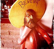Beneva by Kerryn Benbow