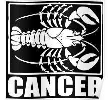 CANCER-2 Poster