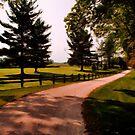 A Peaceful Path by Brian Gaynor
