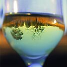 Landscape in a Glass by Kym Howard