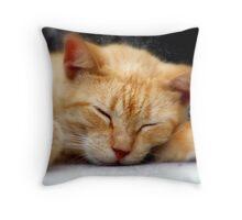 ET Sleeping Throw Pillow