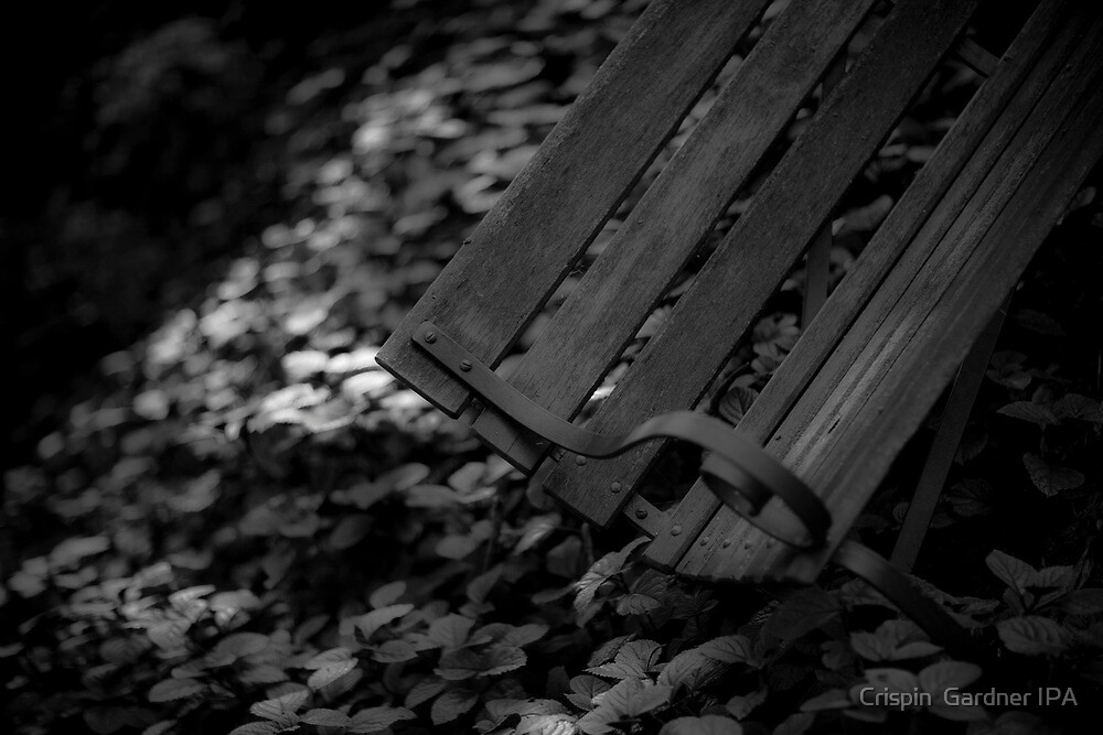 Secret Seat by Crispin  Gardner IPA
