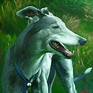 Greyhound - &quot;Bella&quot; by Simon Groves