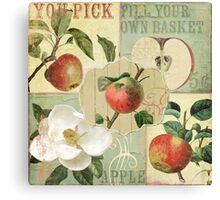 Apple Blossoms III Canvas Print