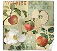 Apple Blossoms III Poster