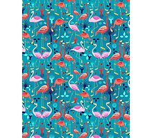 beautiful pattern lovers flamingo Photographic Print