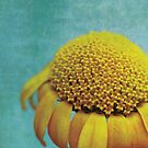 Uplifting by Anne Staub