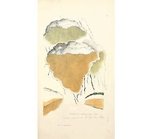 Coloured figures of English fungi or mushrooms James Sowerby 1809 0235 Photographic Print