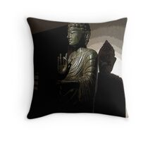 """To see into the darkness illuminate from within.""  Throw Pillow"